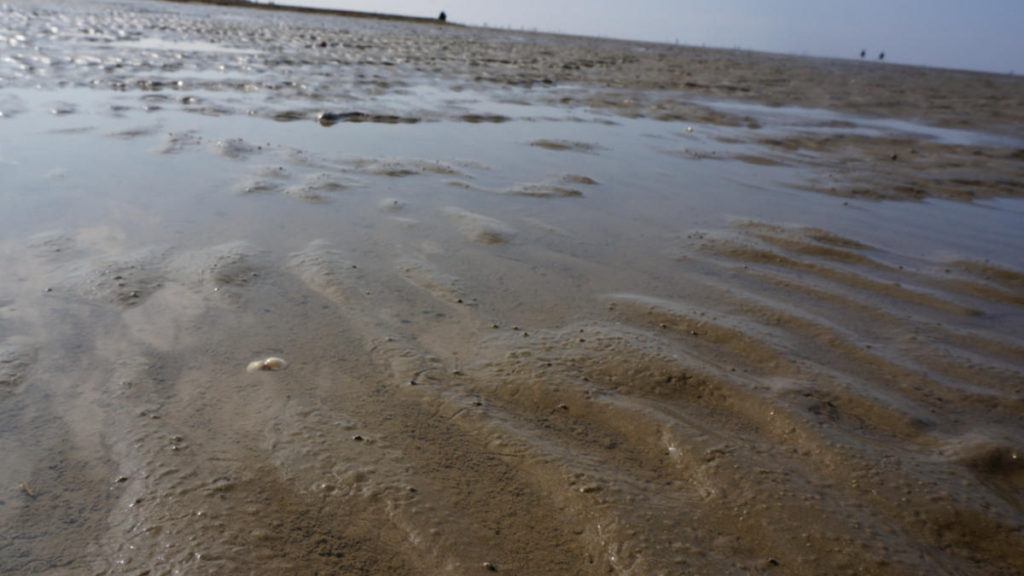 Watt vor Cuxhaven-Duhnen