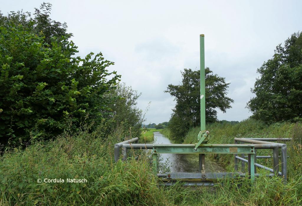 Entwässerungsgraben mit Wehr