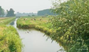 Entwässerungsgraben bei Osten
