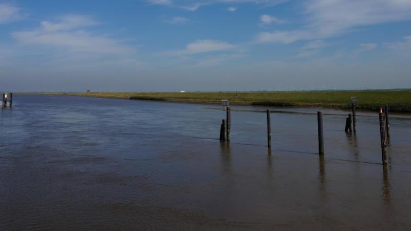 Mündung der Oste